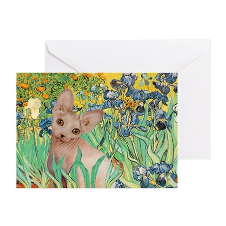 Irises / Sphynx Greeting Cards (Pk of 20)