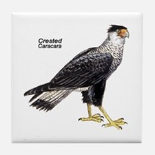 Crested Caracara Bird Tile Coaster