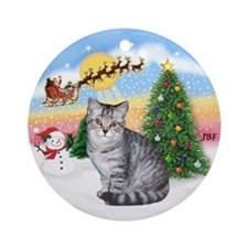 Take Off (1) and Silver Tabby Ornament (Round)