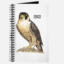 Peregrine Falcon Bird Journal