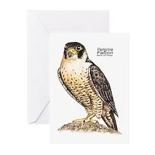 Peregrine Falcon Bird Greeting Cards (Pk of 10