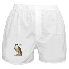 Peregrine Falcon Bird Boxer Shorts