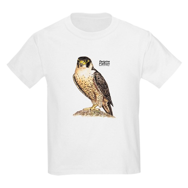 Peregrine Falcon Bird Ash Grey Kids Light T-Shirt ...