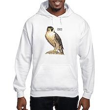Peregrine Falcon Bird (Front) Jumper Hoody