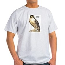 Peregrine Falcon Bird (Front) Ash Grey T-Shirt