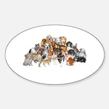 Other Dogs and Cats Oval Bumper Stickers
