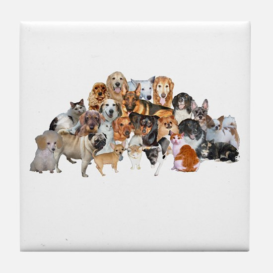 Other Dogs and Cats Tile Coaster