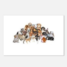 Other Dogs and Cats Postcards (Package of 8)