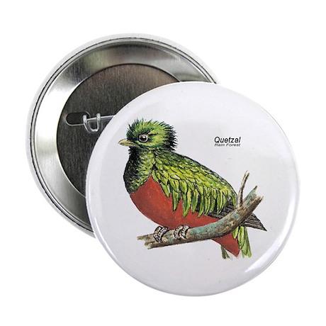 Quetzal Rain Forest Bird Button
