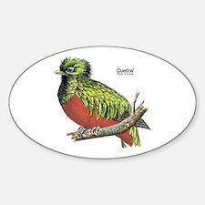 Quetzal Rain Forest Bird Oval Decal