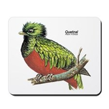 Quetzal Rain Forest Bird Mousepad