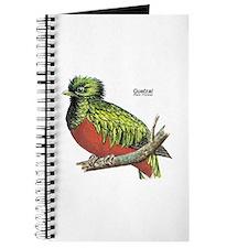 Quetzal Rain Forest Bird Journal