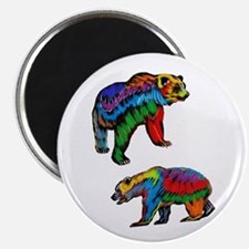 BEARS Magnets