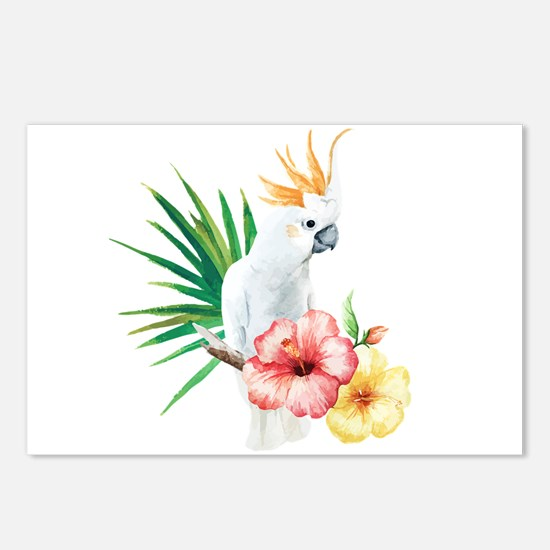 Tropical Cockatoo Postcards (Package of 8)