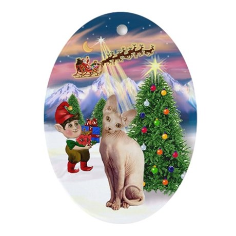 Take Off (#1) & Sphynx cat Oval Ornament