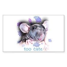 Hairless Rat Rectangle Decal