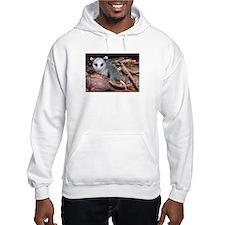 opossum Hoodie