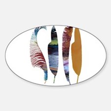 Colorful feathers Decal