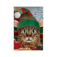 Santa's Elf-Cat Christmas Magnet