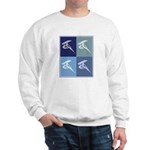 Windsurfing (blue boxes) Sweatshirt