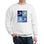 Skiing  (blue boxes) Sweatshirt