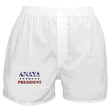 ANAYA for president Boxer Shorts
