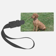 Vizsla Puppy - ZsaZsa Sitting Pr Luggage Tag