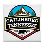 Gatlinburg Tile Coasters