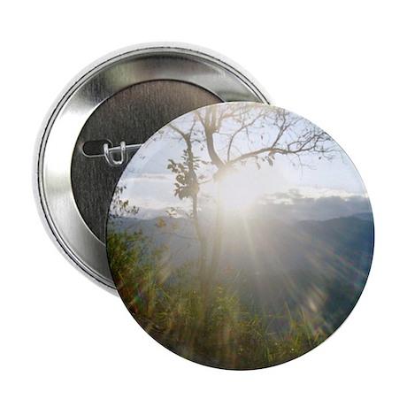 """Sun through Tree 2.25"""" Button"""