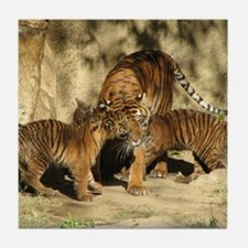Helaine's Tiger Cubs Tile Coaster