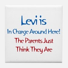 Levi Is In Charge  Tile Coaster
