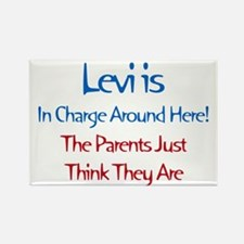 Levi Is In Charge Rectangle Magnet (10 pack)