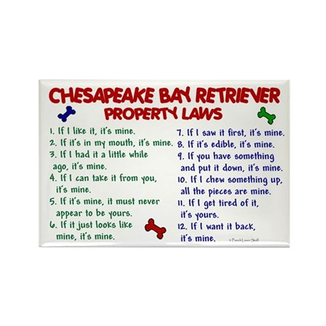Chesapeake Bay Retriever Property Laws 2 Rectangle