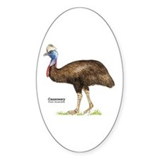Cassowary Australian Bird Oval Decal