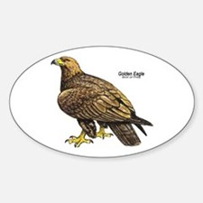 Golden Eagle Bird Oval Decal