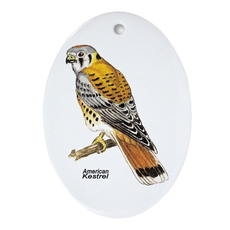 American Kestrel Bird Keepsake (Oval)