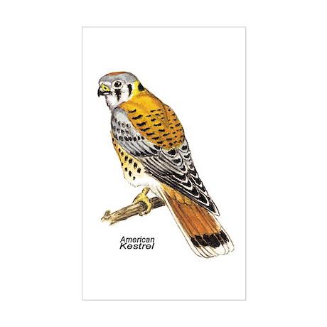 American Kestrel Bird Rectangle Sticker