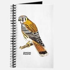 American Kestrel Bird Journal