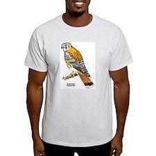 American Kestrel Bird (Front) Ash Grey T-Shirt