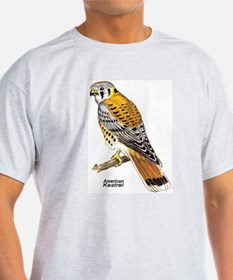 American Kestrel Bird (Front) Ash Grey T-Shirt