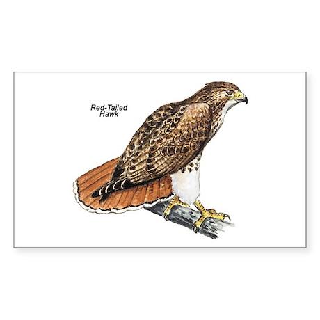 Red-Tailed Hawk Bird Rectangle Sticker