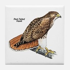 Red-Tailed Hawk Bird Tile Coaster