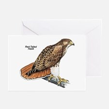Red-Tailed Hawk Bird Greeting Cards (Pk of 10)