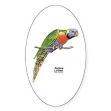 Rainbow Lorikeet Bird Oval Decal
