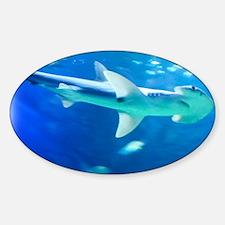 Cute Hammerhead shark Decal