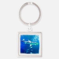 Unique Shark Square Keychain