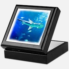 Cute Shark Keepsake Box