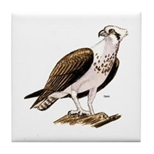 Osprey Bird of Prey Tile Coaster