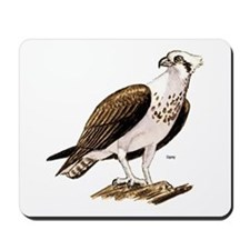 Osprey Bird of Prey Mousepad