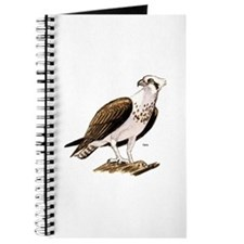 Osprey Bird of Prey Journal